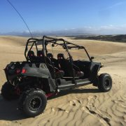 Polaris RZR 900 XP4 # 6